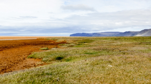 Red beach in Rauðisandur