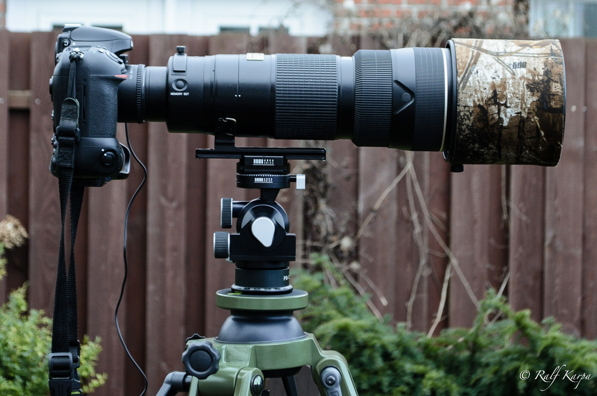 D800 with Nikkor 200-400 and TC-17